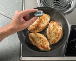 Food Safety Training - Thermometer